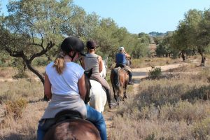 Combination Course: Spanish and Horse Riding