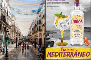 Gin drinks: Larios
