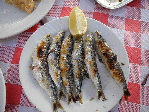 Boquerones - Dinge tun in Malaga - Spanischkurse bei CILE