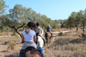 Deporte y Español. Equitación. Escuela de Español en Málaga, España