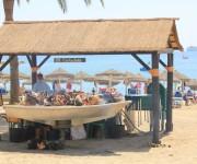 чирингиты на пляже