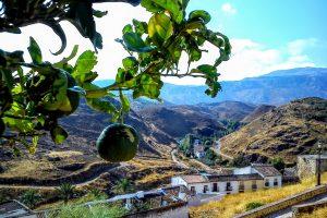 Ausflug ins Herz Andalusiens – Antequera