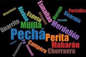 Sprechen Sie schon Malagueño?
